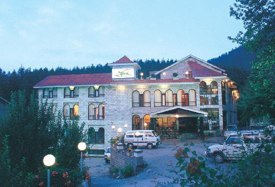 Luxury Hotels In Manali Luxury Hotels Packages